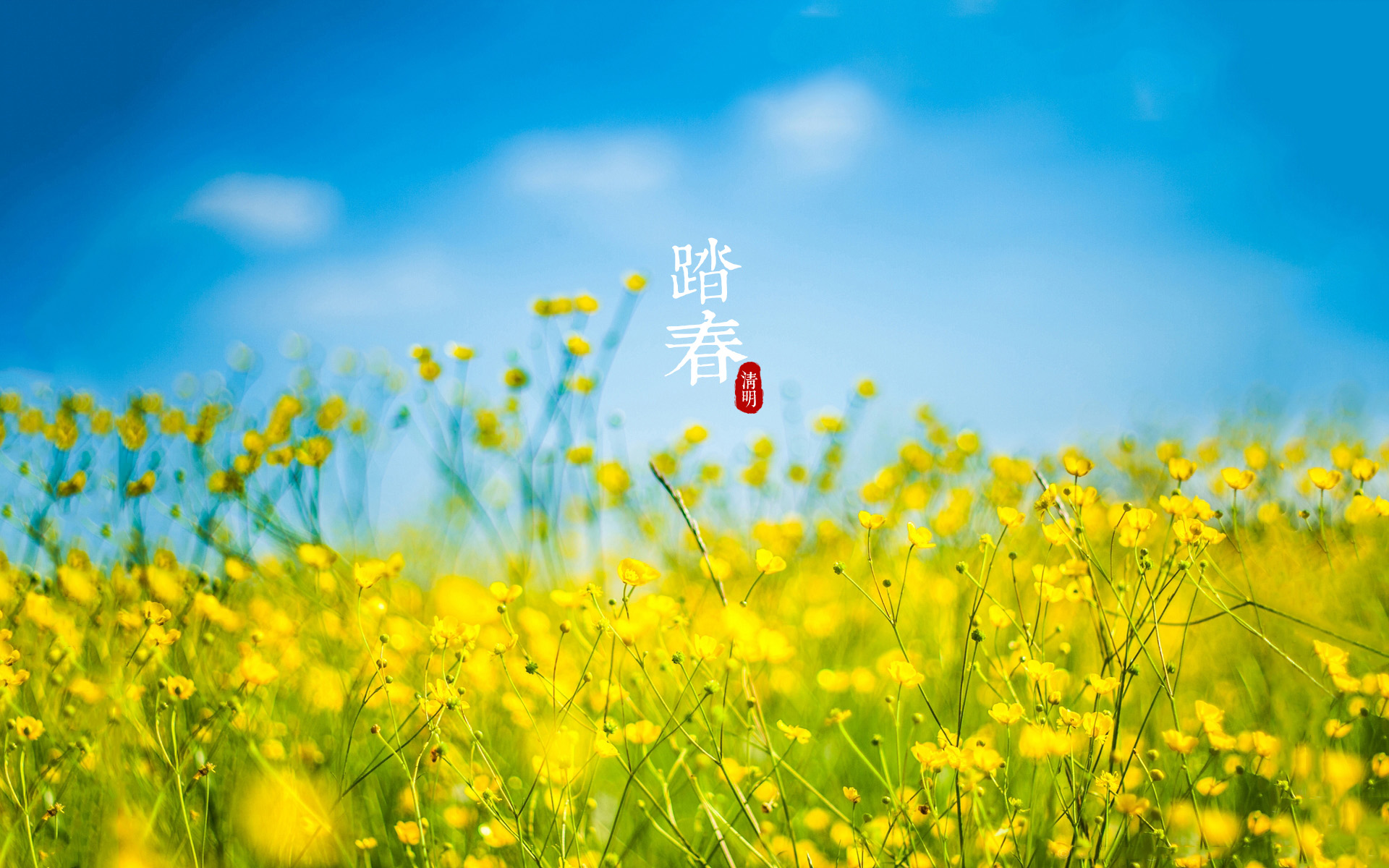 2016.4.2(周六)龙湖大桥,五龙金矿山地穿越。寻找春的气息