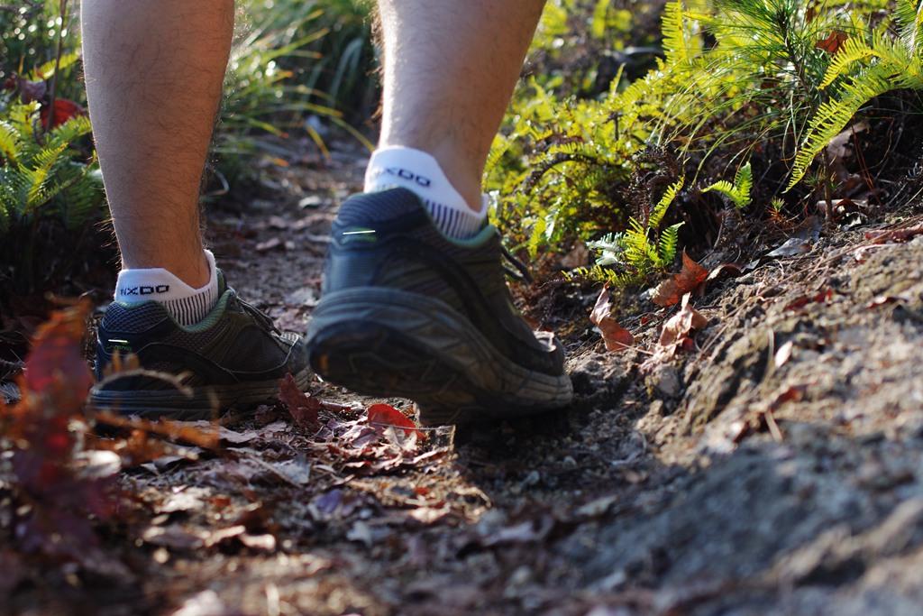 贴身护卫——INXDO 五指机能跑步袜